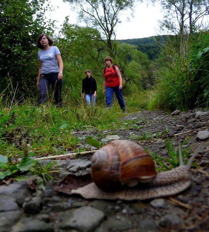 Ścieżka przyrodnicza wokół Ustrzyk Górnych