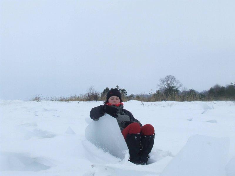 fotel lodowy