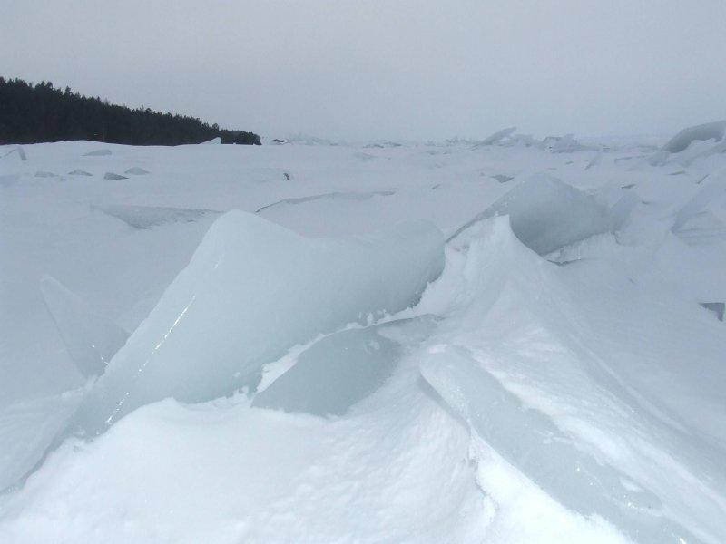 pole lodowe