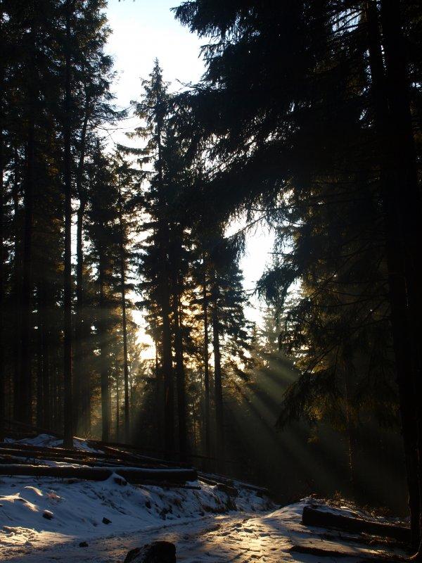 w promieniach słońca na Śnieżnik