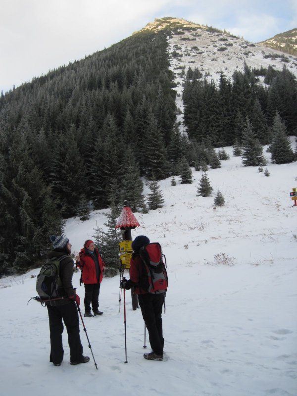 Przełęcz Bobrowiecka, w tle Bobrowiec