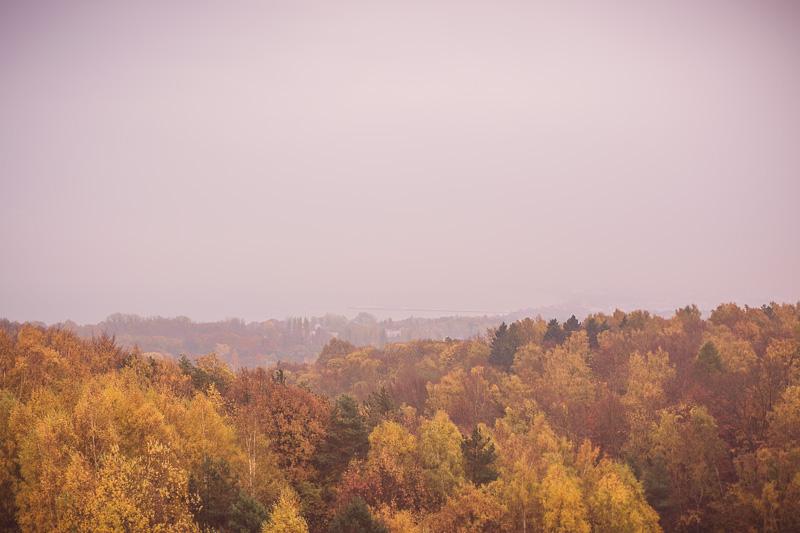 I widok na Sopot eee