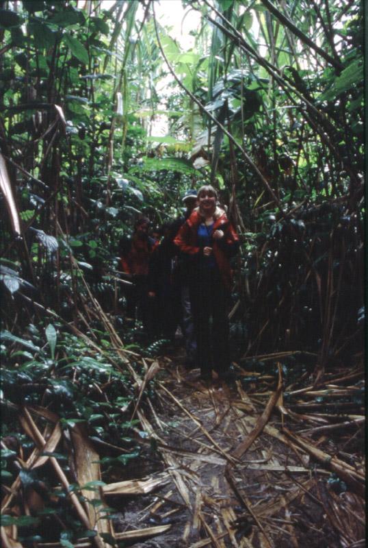 a teraz w dżungli