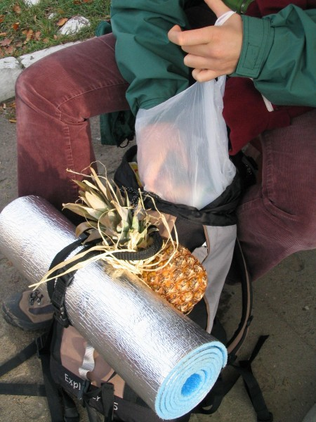 było egzotycznie - ananasy i inne rarytasy :)
