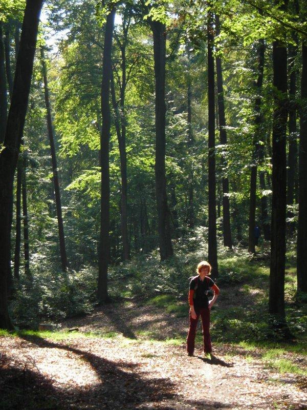 Rudzia w lesie :)