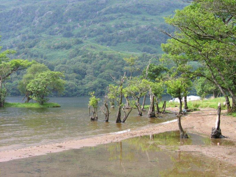 Koniec ( a może początek ) jeziora Loch Lomond