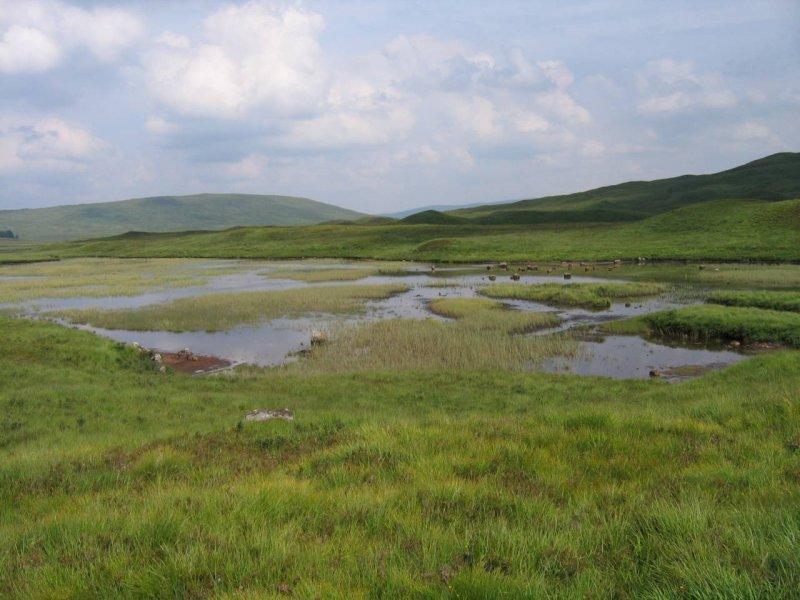 'Bagna' Rannoch Moor