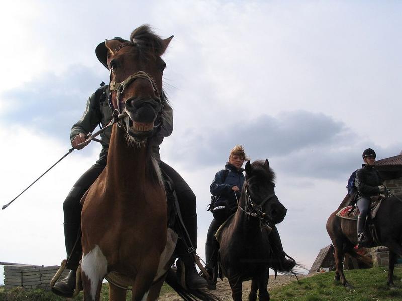 przyjechali bieszczadzcy kowboje