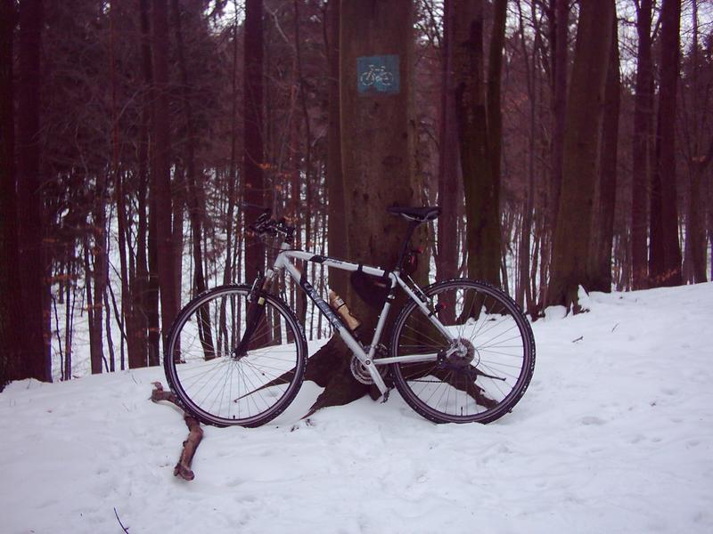 rowery dwa