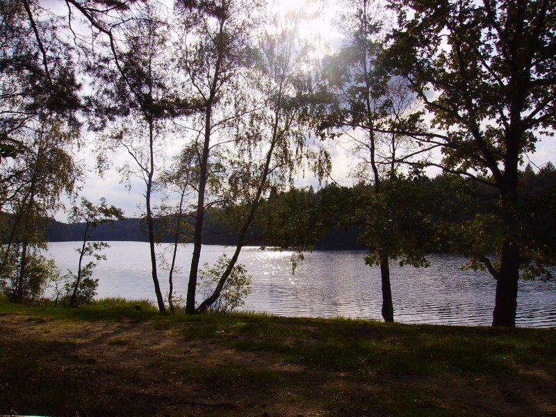 jeziorko w Borowie