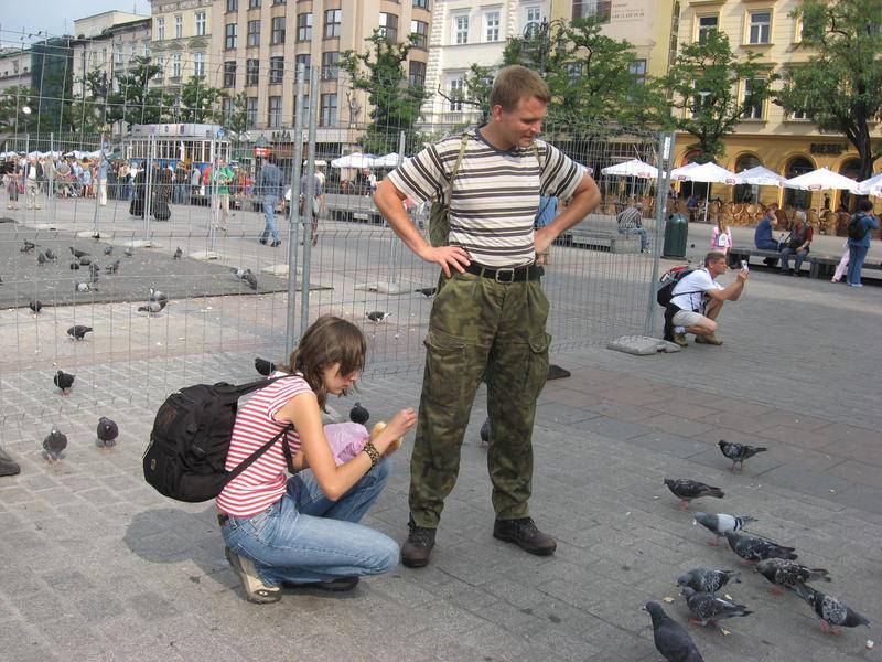 Gołębie na krakowskim rynku
