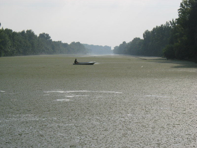Rzeka Koros