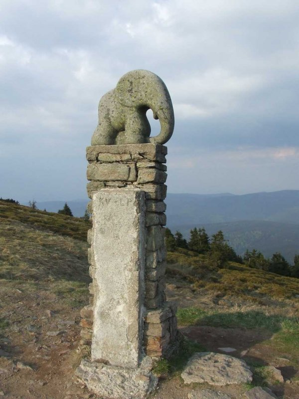 słoń -strażnik gór