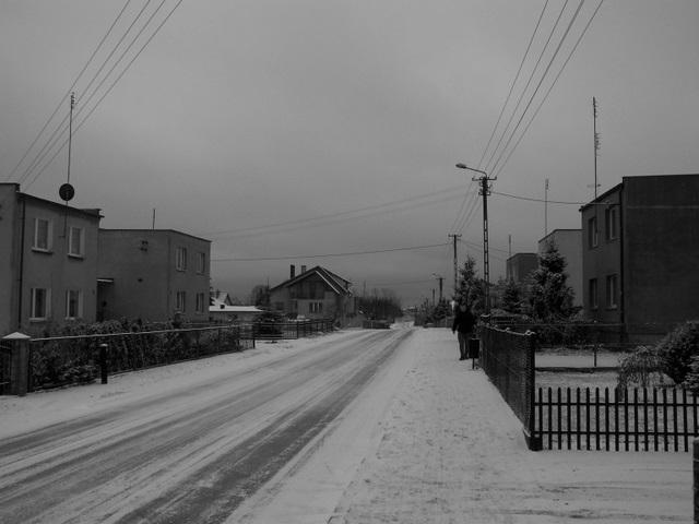 Pinczyn w zimowej scenerii