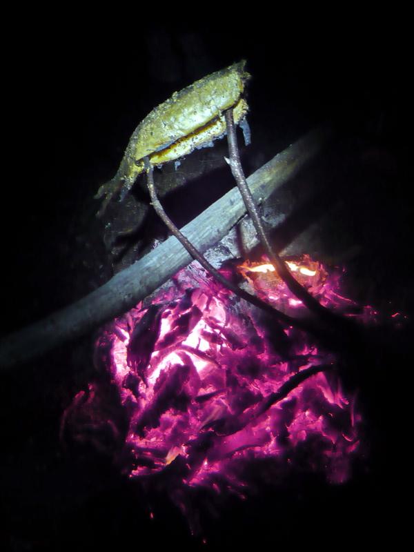 rybka prosto z ognia