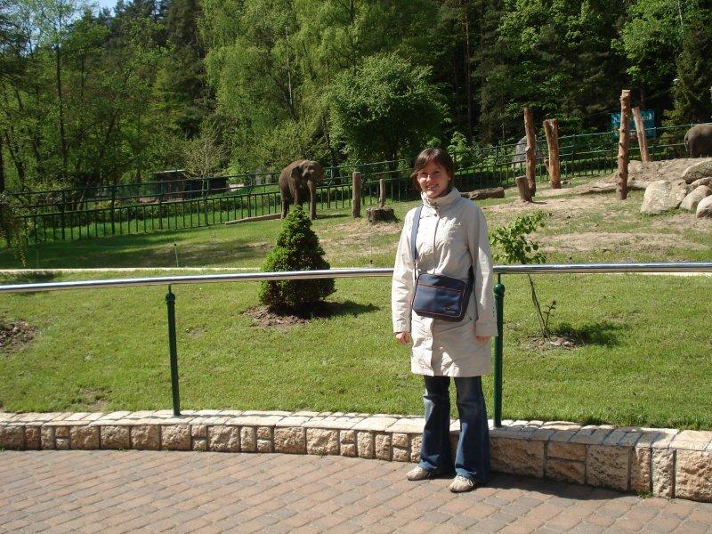 Marysia i słoń