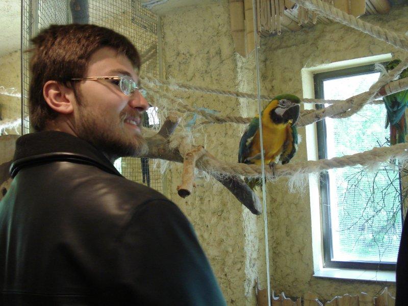 Piotr i papuga