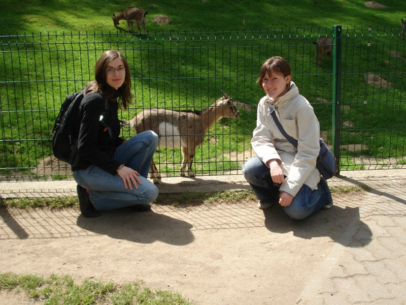 Marysia, Ania i koza afrykańska :-)