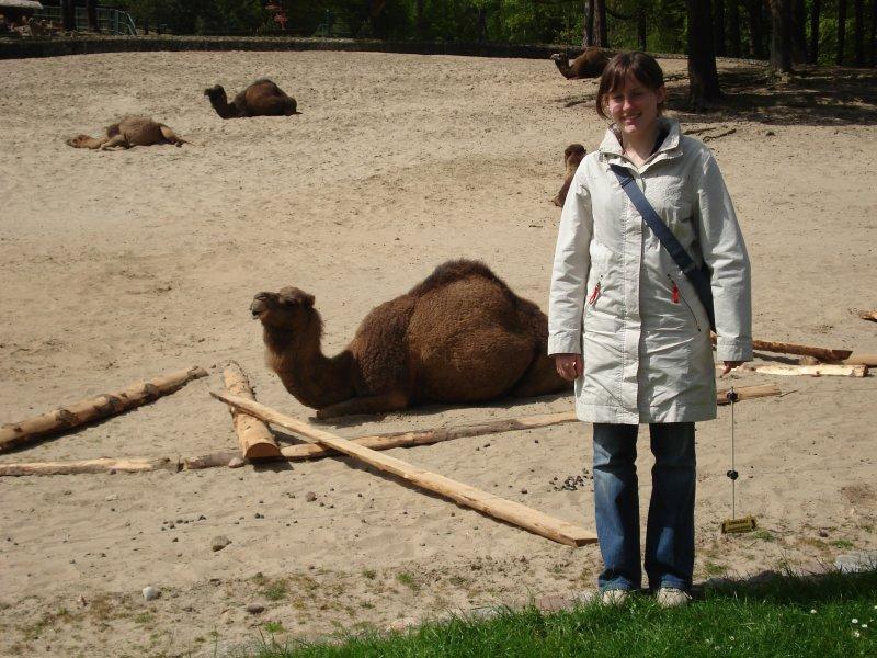 Marysia i wielbłądek