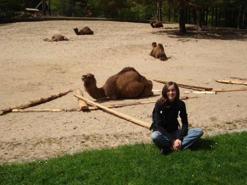 Ania i wielbłądek