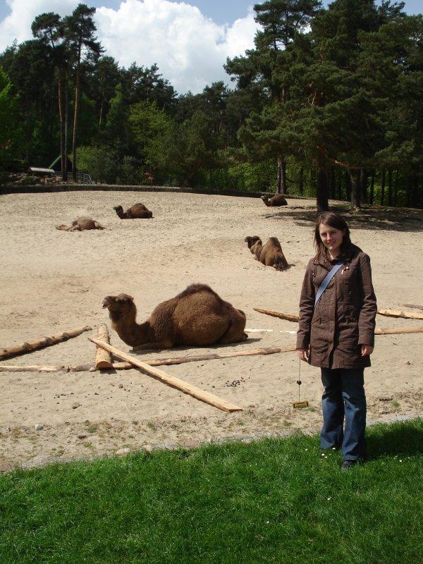 Ja, czyli Kasia i wielbłądek