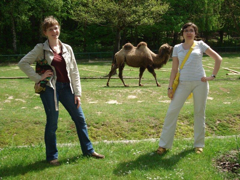 Agata, Monika i odchodzący wielbłądek zdj. 2