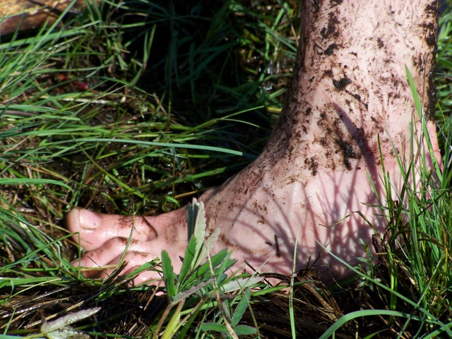 noga ludzia z bagien ;-)