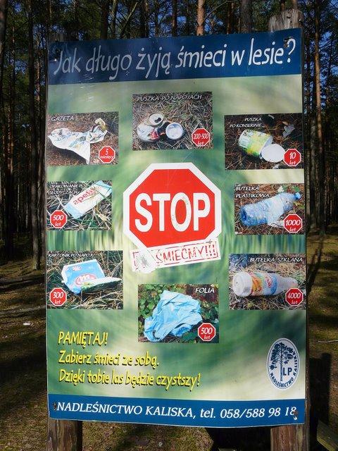 Jak długo żyją śmieci w lesie?