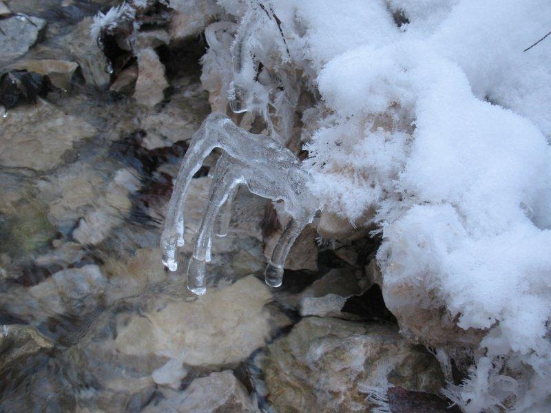 Wystająca spod śniegu zgrabiała dłoń Pani Zimy
