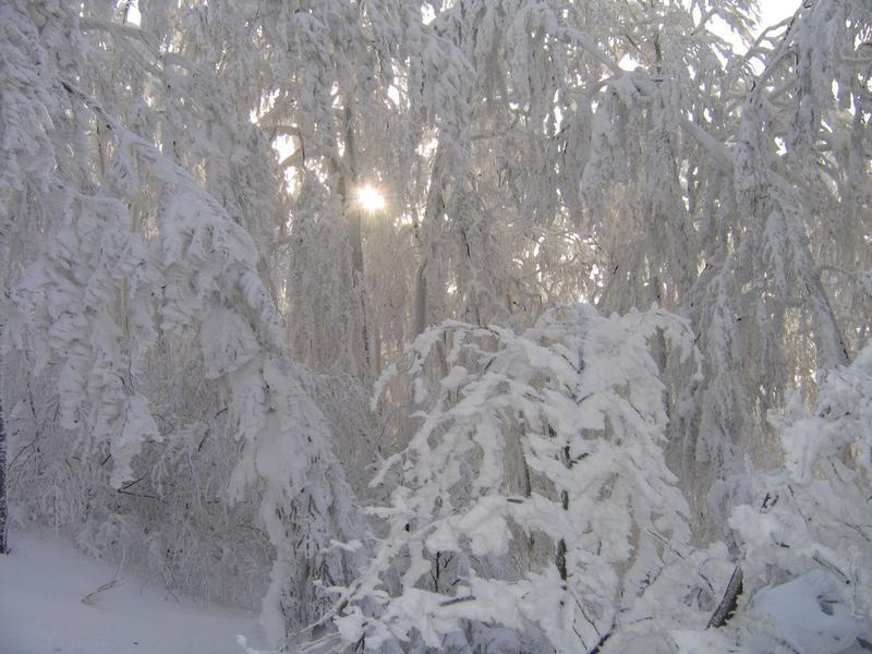 Śnieżne draperie